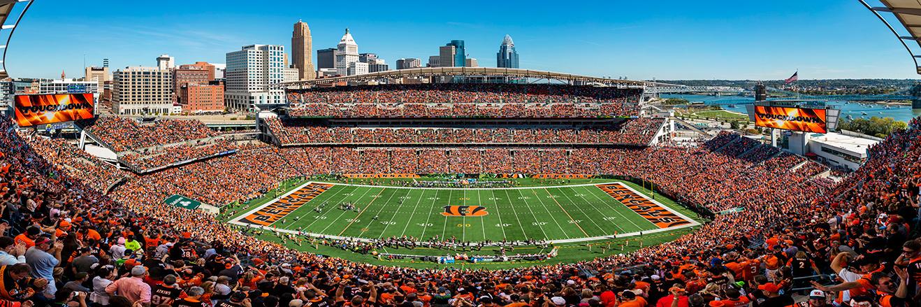 Cincinnati Bengals Panoramic Picture - NFL Fan Cave Decor